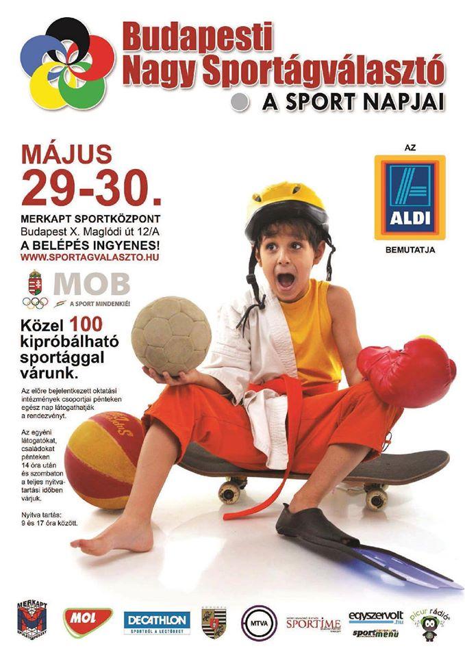2015.05.25_Nagy Bp-i Sportagvalaszto_plakat