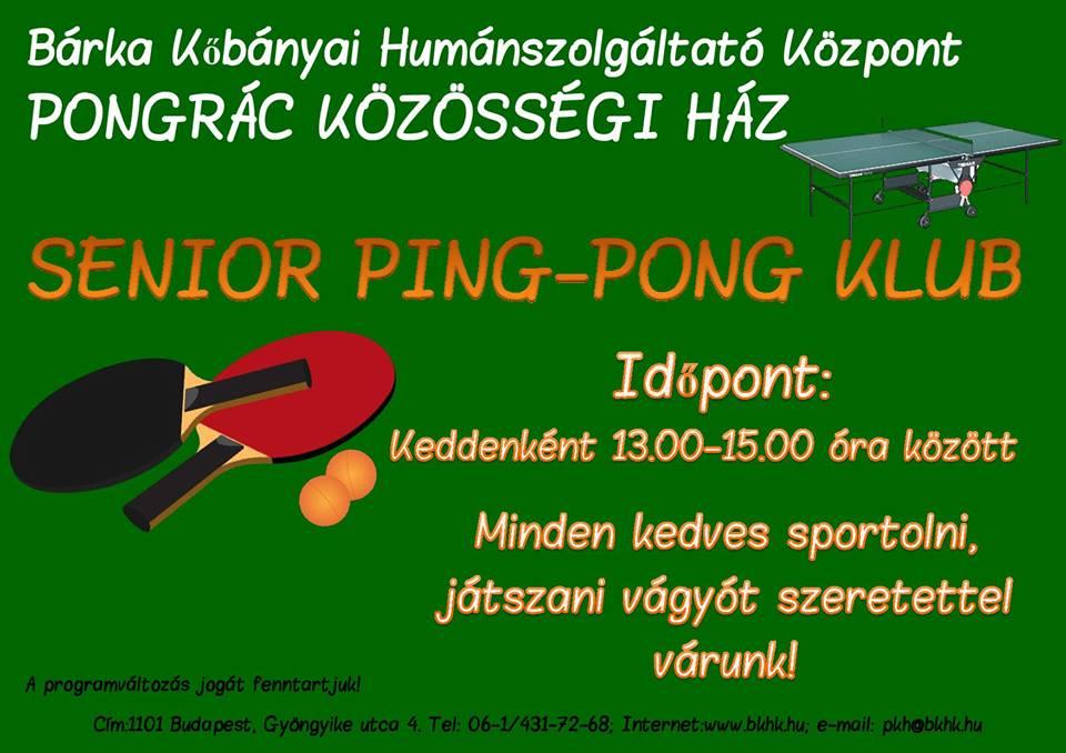 2016.01.06_PKH_senior pingpong_plakat