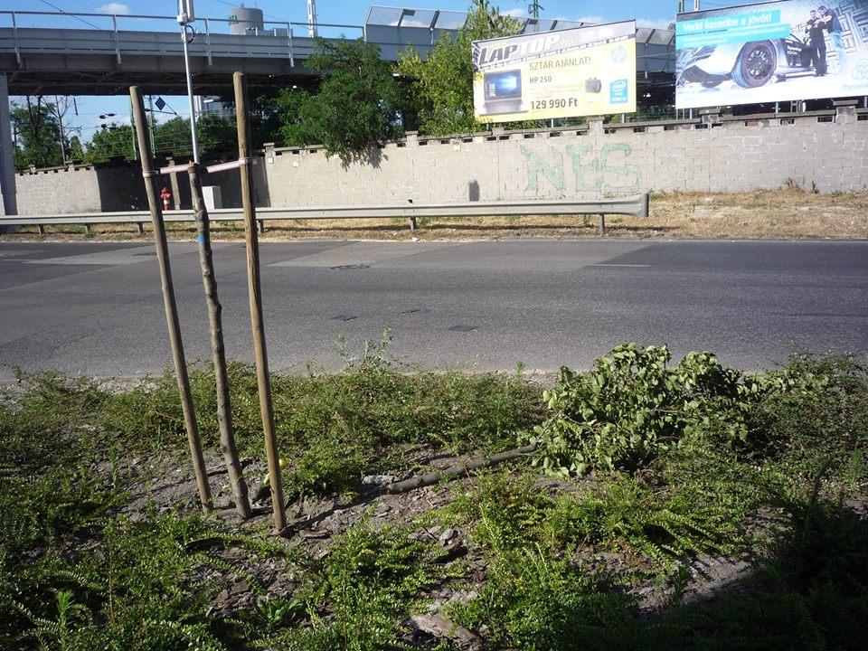 2016.07.06_Pongrac-Salgo sarok