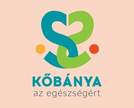 2016.10.28_Kobanya_online kerdoiv az egeszsegunkrol