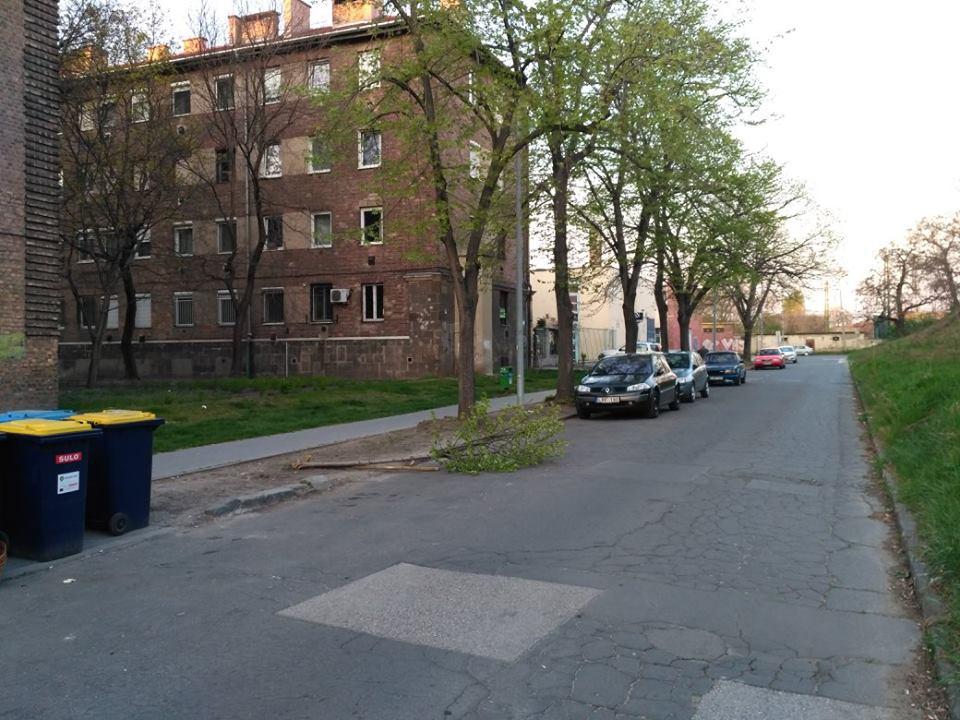 2017.04.03_Kidolt facsemete_Csilla utca 9.